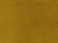 Balitmore Goldenrod